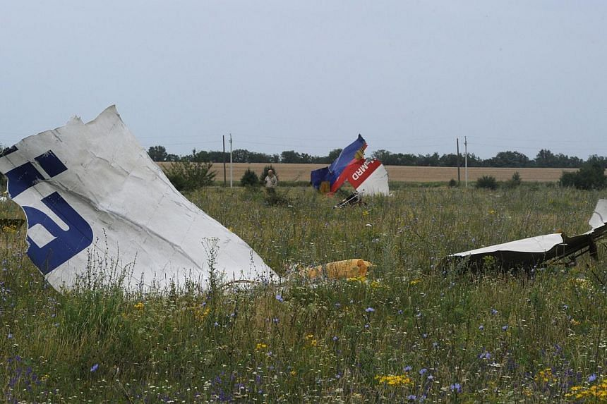 A picture taken on July 18, 2014 shows the wreckages of the Malaysia Airlines jet carrying 298 people from Amsterdam to Kuala Lumpur a day after it crashed, near the town of Shaktarsk, in rebel-held east Ukraine. -- PHOTO: AFP