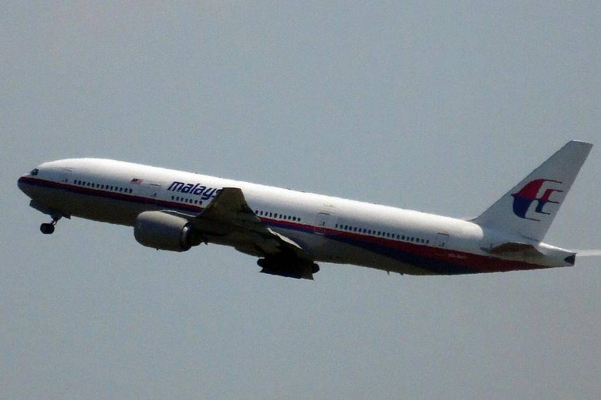 Photo shows Malaysia Airlines flight MH17 leaving Schiphol Airport in Schiphol, the Netherlands, on July 17, 2014. An Air India plane flying less than 25 kilometres from Malaysia Airlines Flight MH17 when it was downed had tried to make contact with