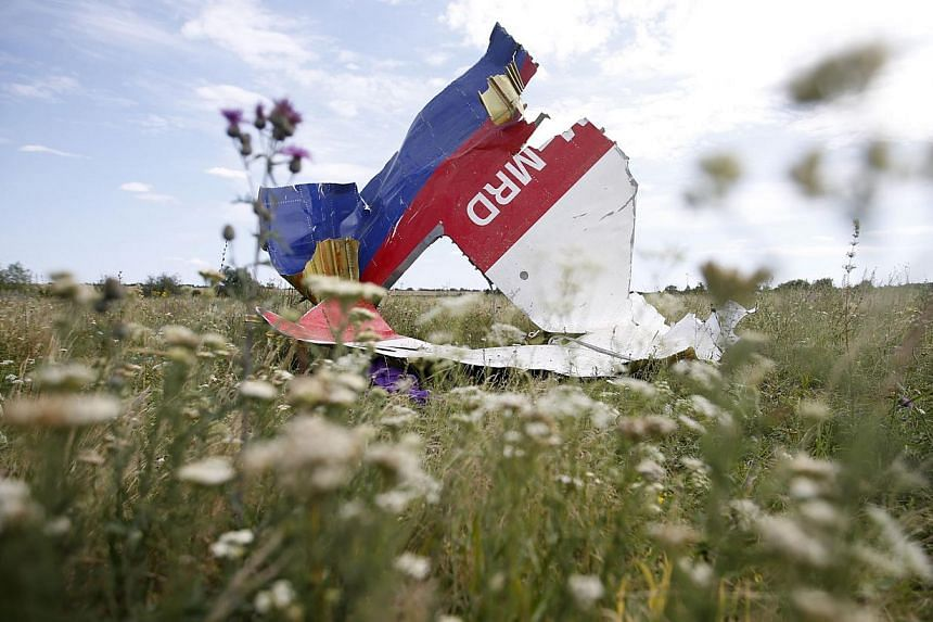 A part of the wreckage of Malaysia Airlines Flight MH17 is seen at its crash site, near the village of Hrabove, Donetsk region, July 20, 2014.Dutch investigators on Monday inspected bodies recovered from downed passenger airliner MH17 which had