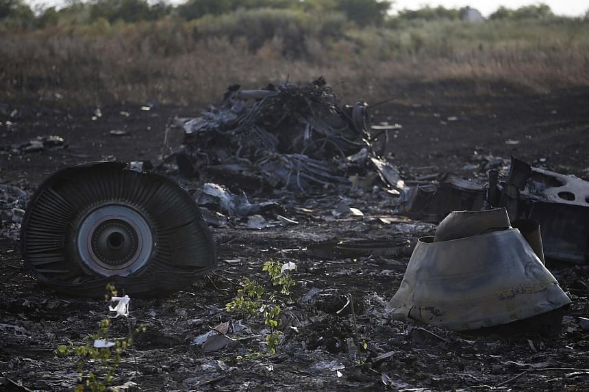 Wreckage is pictured at the crash site of Malaysia Airlines Flight MH17, near the settlement of Grabovo in the Donetsk region on July 19, 2014. -- PHOTO: REUTERS