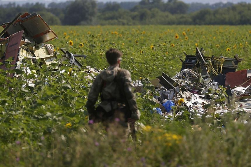 An armed pro-Russian separatist stands guard as monitors from the Organization for Security and Cooperation in Europe (OSCE) and members of a Malaysian air crash investigation team (both not pictured) inspect the crash site of Malaysia Airlines Fligh