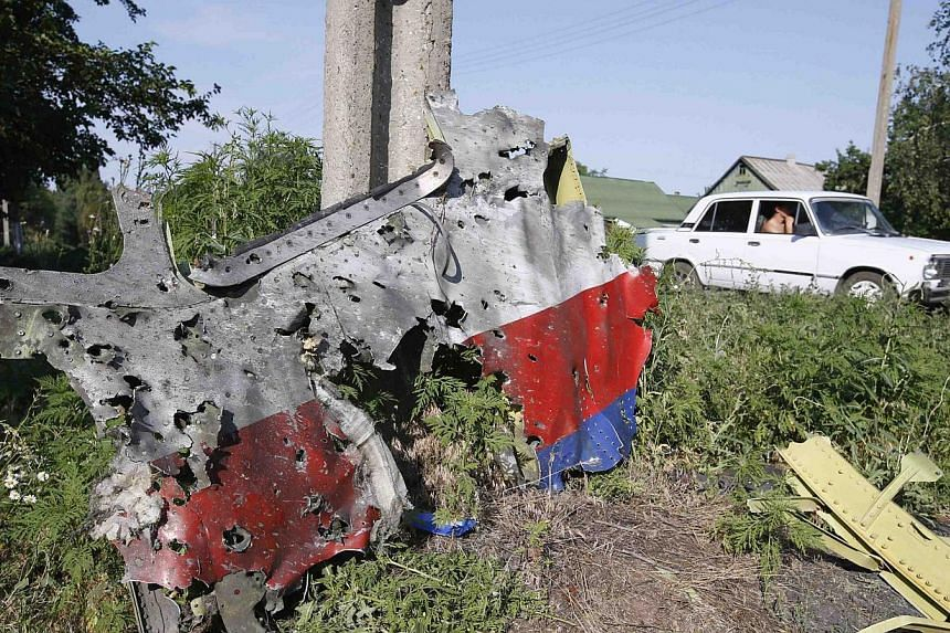 A piece of the wreckage is seen at a crash site of the Malaysia Airlines Flight MH17 in the village of Petropavlivka (Petropavlovka), Donetsk region on July 24, 2014.-- PHOTO: REUTERS