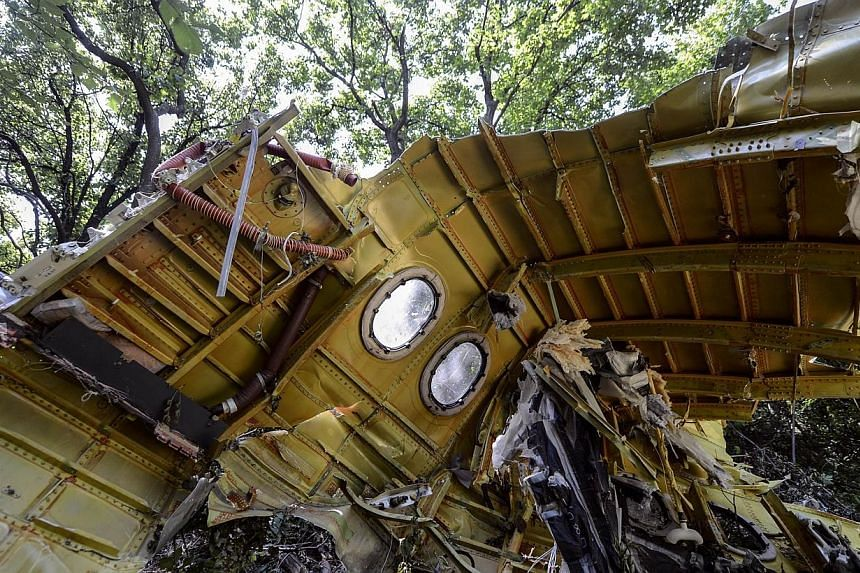 A piece the fuselage at the crash site of the Malaysia Airlines Flight MH17 near the village of Hrabove (Grabovo), some 80km east of Donetsk on July 25, 2014.-- PHOTO: AFP
