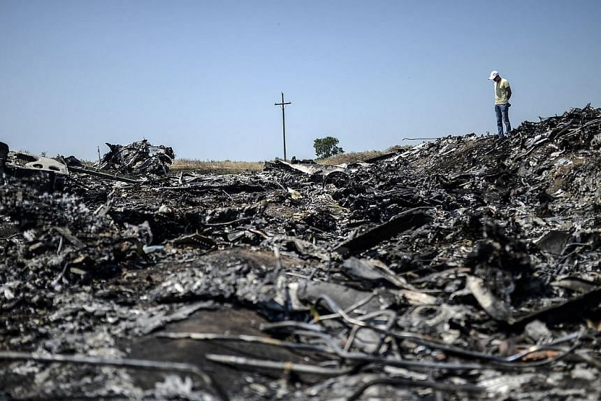 A man stands at the crash site of the Malaysia Airlines Flight MH17 on July 26, 2014, near the village of Hrabove (Grabove), in the Donetsk region.  A team of 30 Dutch forensic experts headed on Sunday, July 27, to the crash site of flight
