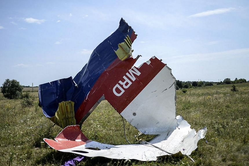 A picture shows a piece of debris of the fuselage at the crash site of the Malaysia Airlines Flight MH17 near the village of Hrabove (Grabovo), some 80km east of Donetsk, on July 25, 2014.The commercial director of Malaysia Airlines on Sunday,