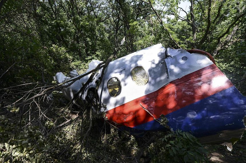 """A picture shows a piece of debris of the fuselage at the crash site of the Malaysia Airlines Flight MH17 near the village of Hrabove (Grabovo), some 80km east of Donetsk, on July 25, 2014.The downing of Malaysia Airlines flight MH17 """"may amount"""