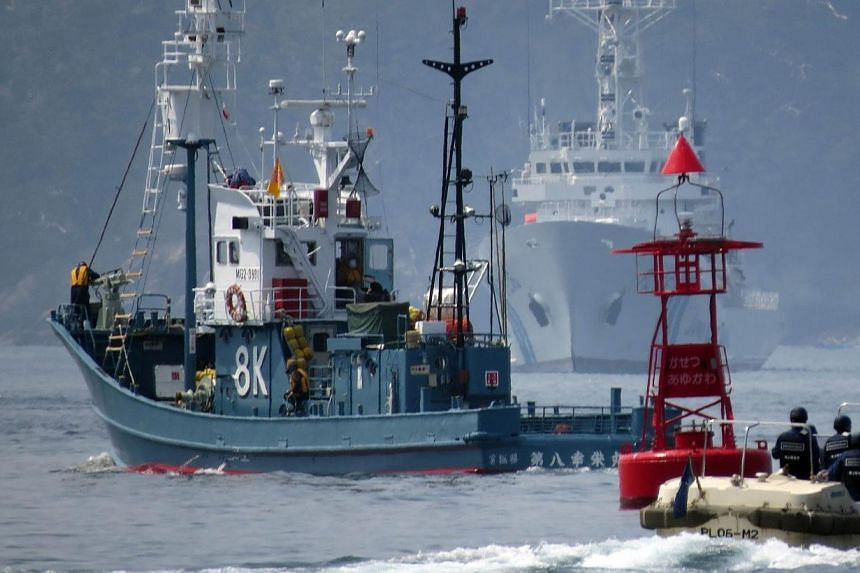 A Japanese whaling fleet (left) leaving from Ayukawa port in Ishinomaki City, northern Japan on April 26, 2014.Japan announced on Tuesday, July 29, 2014, that it had wrapped up a whale hunt in the Pacific, the second campaign since the UN's top