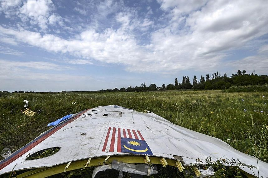 A piece of the wreckage of the Malaysia Airlines flight MH17 is pictured in a field near the village of Grabove, in the region of Donetsk on July 20, 2014. -- PHOTO: AFP