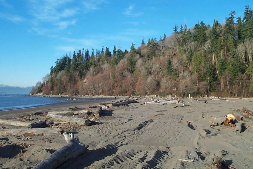 Wreck Beach in Vancouver, Canada -- PHOTO: SCREENGRAB FROM WWW.WRECKBEACH.ORG