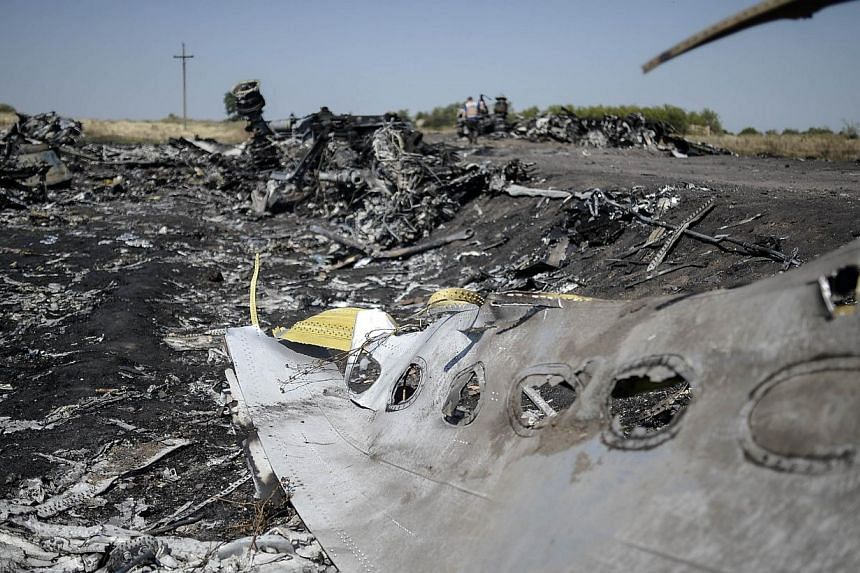 A part of the Malaysia Airlines Flight MH17 at the crash site in the village of Hrabove (Grabovo), some 80km east of Donetsk on Aug 2, 2014.Malaysia's transport minister Liow Tiong Lai has said a preliminary investigation report for Malaysia Ai