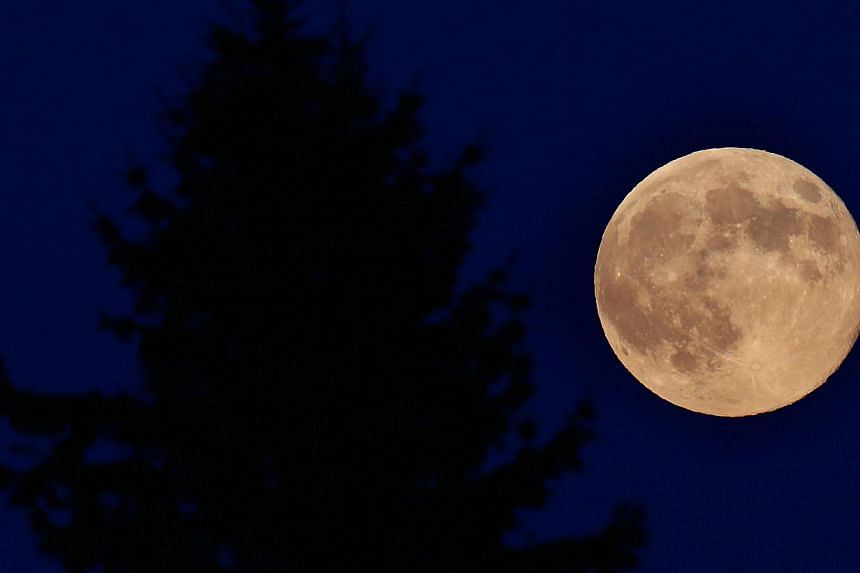 A supermoon rises through the trees on August 10, 2014 in Spencer, New York. -- PHOTO: AFP
