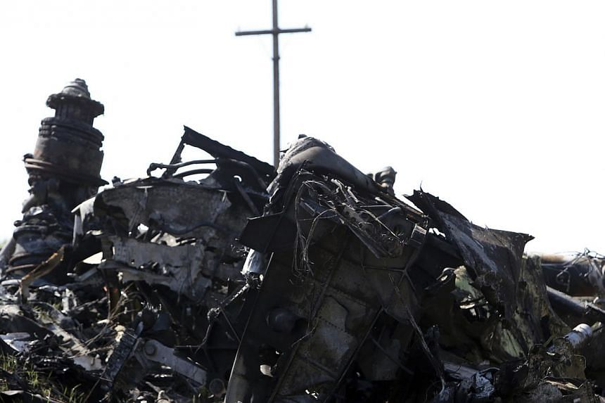 Parts of wreckage are seen at the site where the downed Malaysia Airlines flight MH17 crashed, near the village of Rozsypne in the Donetsk region, eastern Ukraine on August 1, 2014. Following the incident, airlines and industry groups have been pushi