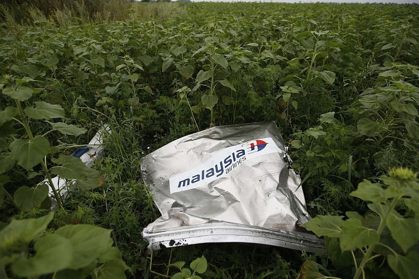 Debris from a crashed Malaysian Airlines MH17 Boeing 777 lies on the ground near the village of Rozsypne in the Donetsk region in this July 18, 2014 file photo. Malaysia and Ukraine have reached a bilateral agreement to expand the number of Mala