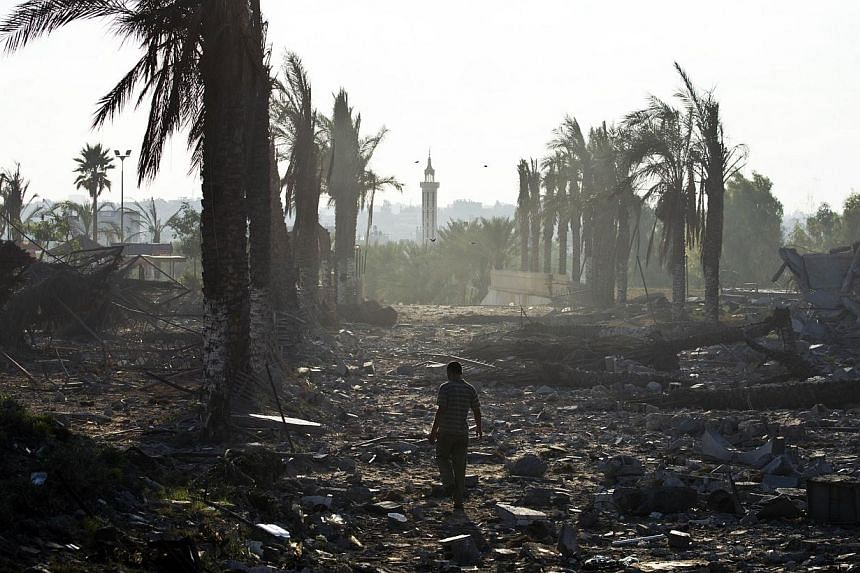 A zookeeper inspects the damage at the Bisan City tourist village zoo, in Beit Hanun on Aug 14, 2014. -- PHOTO: AFP