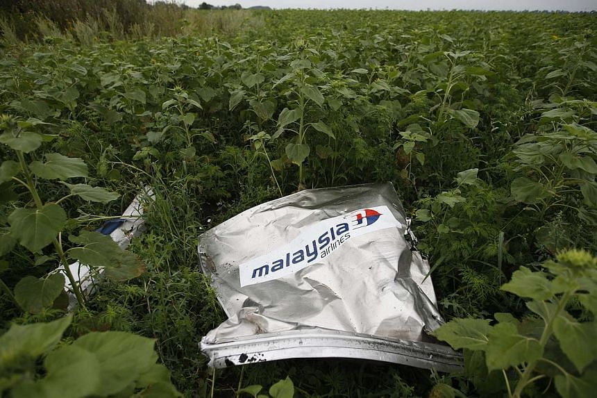 Debris from the crashed Malaysian Airlines MH17 Boeing 777 lies on the ground near the village of Rozsypne in the Donetsk region in Ukraine in this July 18, 2014 file photo. Malaysian defence minister Hishammuddin Hussein said on Aug 17 that the