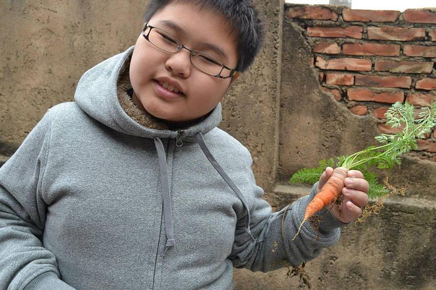 A photo of Delwin Cheah Wien Loong, 11, taken from his Facebook page. -- PHOTO: DELWIN CHEAH WIEN LOONG/FACEBOOK