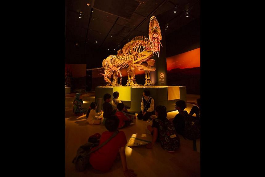 Museums here, such as the ArtScience Museum, hold sleepovers, but only for children.