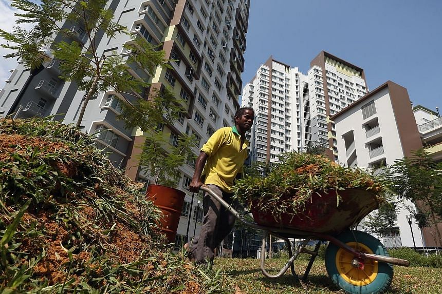 A man works on landscaping against the backdrop of Fernvale Foliage in Sengkang on Sept 2, 2014. Straits Construction, which was responsible for the Fernvale Foliage public housing project, is one of six contractors which will receive awards from the