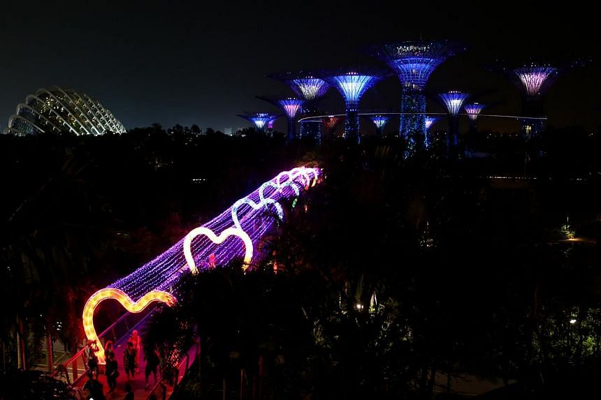 Dragonfly Bridge can be seen lit up at Gardens by the Bay. -- ST PHOTO: ONG WEE JIN