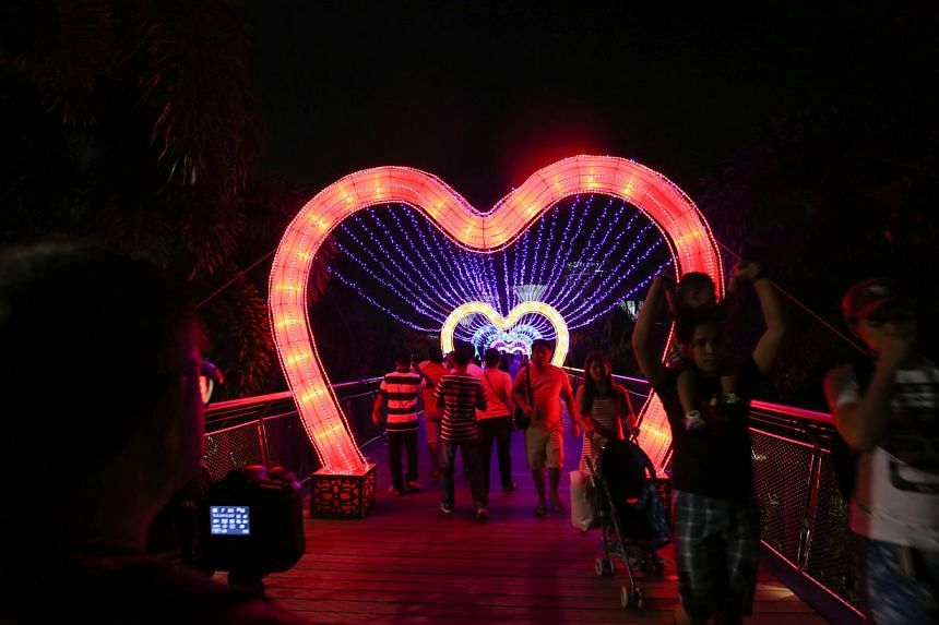 People walk past the light up of Dragonfly Bridge at Gardens by the Bay. -- ST PHOTO: ONG WEE JIN
