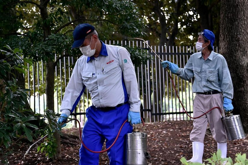 Workers spray insecticide at Yoyogi park in Tokyo on Sept 5, 2014. -- PHOTO: AFP
