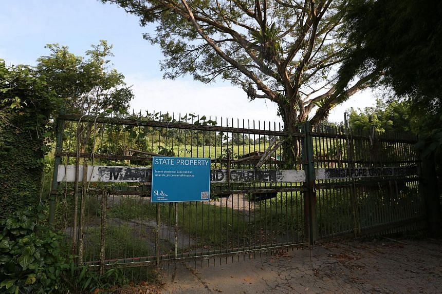 Prime Minister Lee Hsien Loong announced on Thursday that the zoo could expand to take up available land next to it. The neighbouring space now houses the former Mandai Orchid Garden (right) and an old fruit orchard.