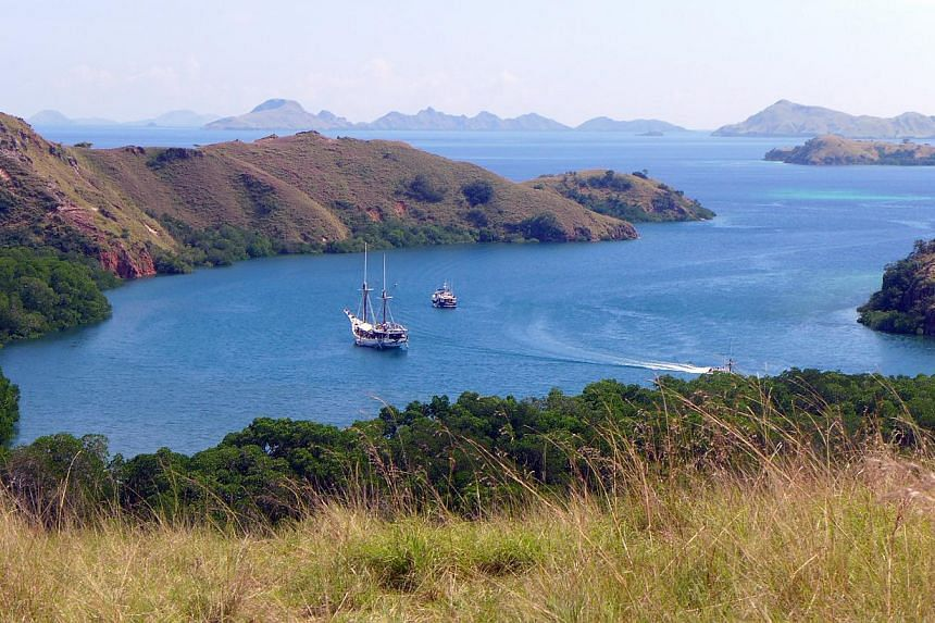 A trek to the summit of Rinca island for a wraparound view of the remote Komodo islands and turquoise bay. -- ST PHOTO: LEE SIEW HUA