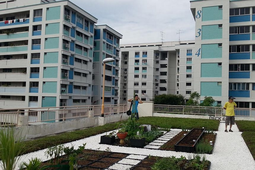 The rooftop of a multi-storey carpark in Yishun has been turned into a community garden by the Rooftop Farming interest group made up of some 18 residents in Nee Soon South Zone D. -- ST PHOTO: AUDREY TAN