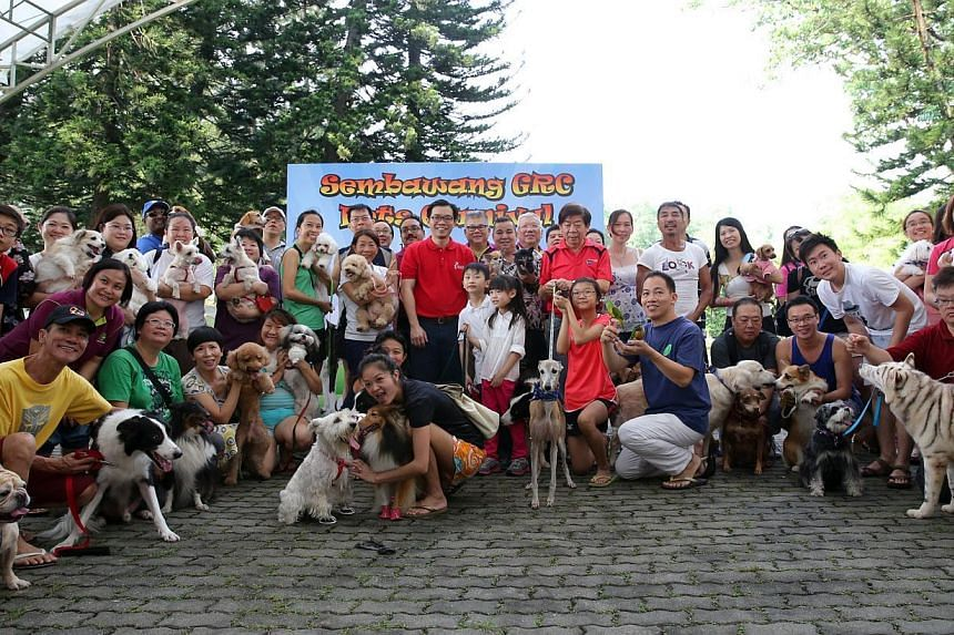 Sembawang GRC held its first pets carnival, at which a new Dog Run site was launched, in Sembawang Park on Sept 14, 2014. -- ST PHOTO:ONG WEE JIN