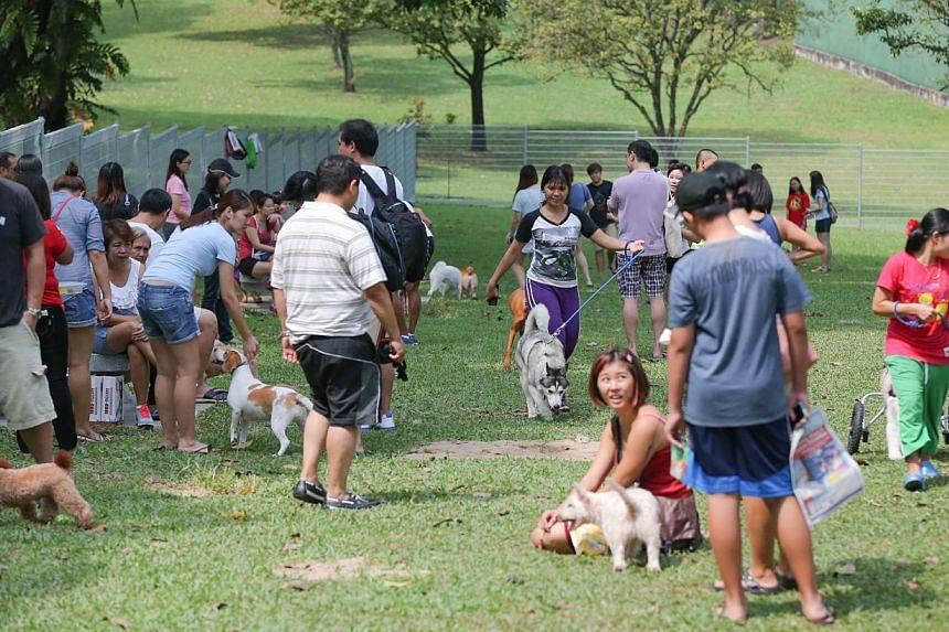 The Dog Run site that was officially launched where dogs can run freely without a leash.-- ST PHOTO:ONG WEE JIN