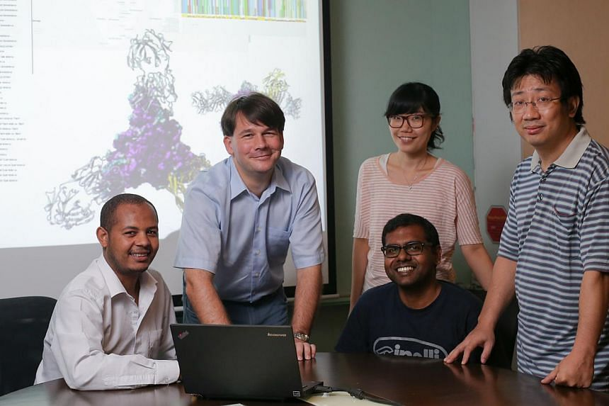 The A*Star team tracing how the Ebola virus has evolved comprises (from left) Mr Biruhalem Taye Beyene, Dr Sebastian Maurer-Stroh, Ms Vachiranee Limviphuvadh, Dr Vithiagaran Gunalan and Mr Han Hao.