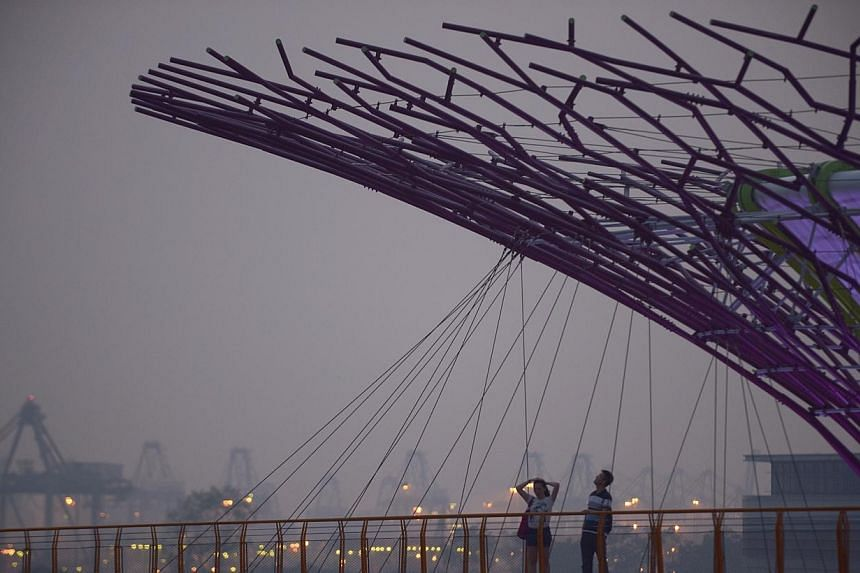 Supertrees at Gardens By The Bay on Oct 8, 2014.Air quality deteriorated over the course of Wednesday, and inched into the unhealthy band at 6pm. -- ST PHOTO: MARK CHEONG