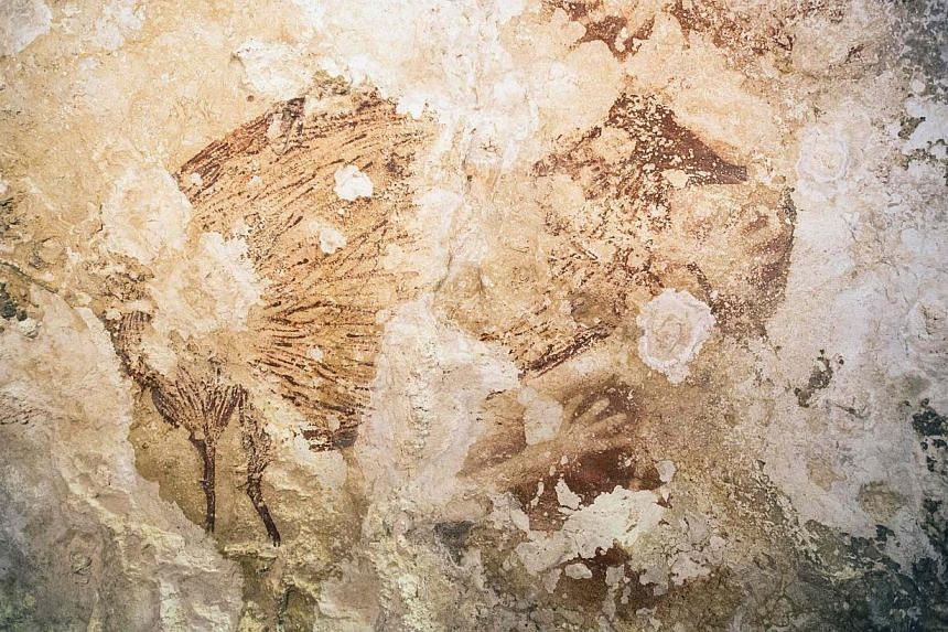 """A Babirusa (""""pig-deer"""") and a hand stencil are pictured in this undated handout image provided by Kinez Riza.The silhouette of a hand on a cave wall in Indonesia is 40,000 years old, showing that Europe was not the birthplace of art as long bel"""