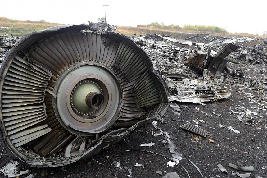 Part of the Malaysia Airlines Flight MH17 at the crash site in the village of Hrabove (Grabovo), some 80km east of Donetsk on Sept 9, 2014. One of the people on the Malaysia Airlines flight MH17 shot down in Ukraine in July was found wearing an