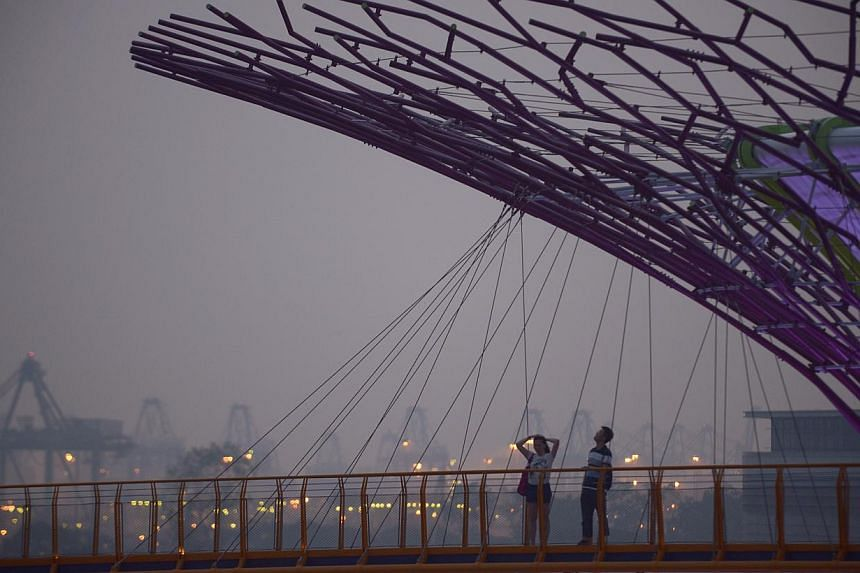 A hazy evening at the Gardens by the Bay at about 7am on Oct 8, 2014. -- ST PHOTO: MARK CHEONG