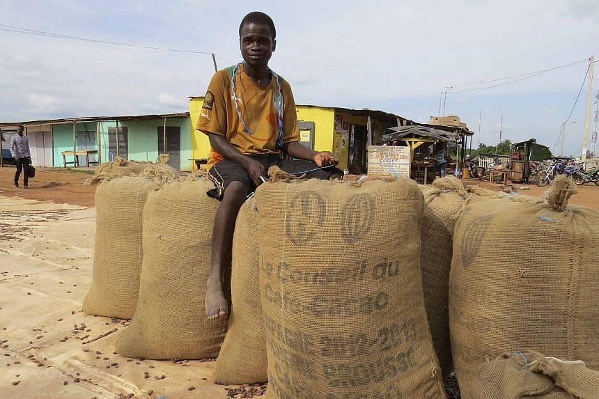 A worker sits on bags of cocoa beans in front of an Ivorian cocoa cooperative in the village of Bonon, Ivory Coast, on Aug 10, 2014.It's harvest season in Ivory Coast, the world's largest producer of cocoa beans -- but there are not enough
