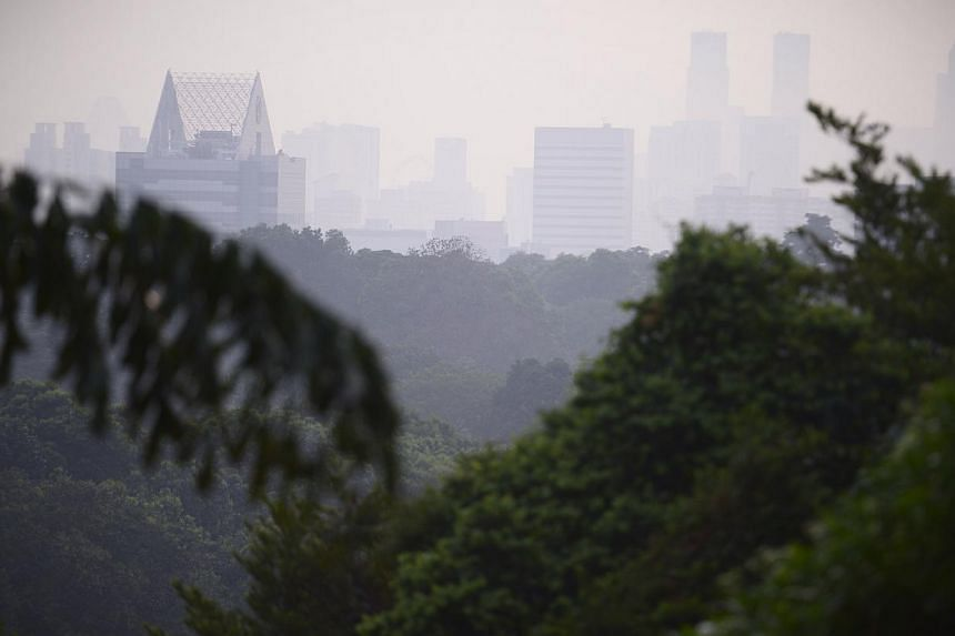 The view from Kent Ridge Park at around 7am on 15 Oct, 2014. The overall PSI reading in Singapore at 7am was 67-72. -- ST PHOTO:MARK CHEONG