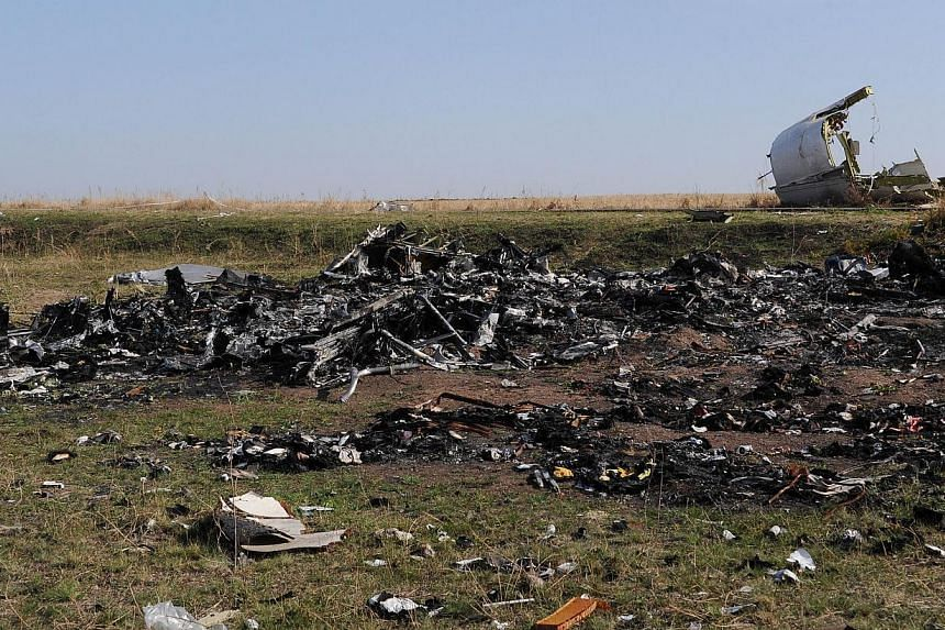 A picture taken on Oct 15, 2014 shows the wreckage of Malaysia Airlines flight MH17 near the village of Rassipnoe. -- PHOTO: AFP