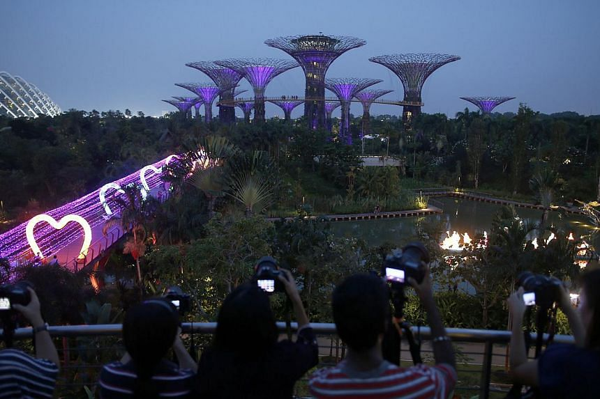 People from a hobby group take pictures of the supertrees at the Gardens by the Bay in Singapore on September 4, 2014. -- PHOTO: REUTERS