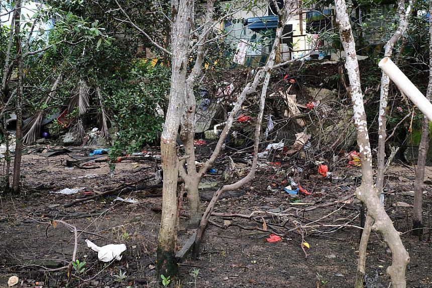 Rubbish at Kranji East Mangrove last month. Statistics by the International Coastal Cleanup Singapore show that littering along the coast has become worse over the past decade, with the average weight of rubbish collected per volunteer rising from 3.