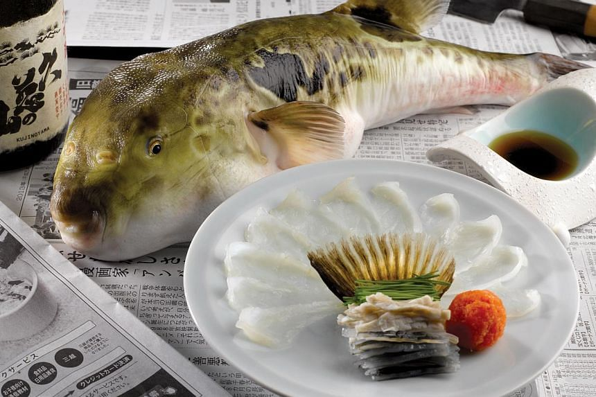 restaurant specialising in puffer fish offers japanese delicacy all