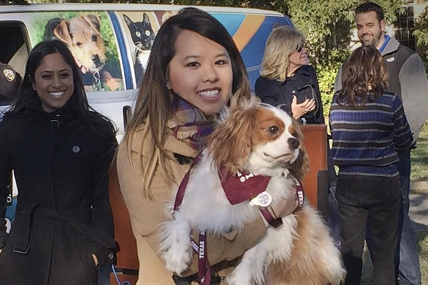 """Ebola survivor Nina Pham is reunited with her dog Bentley at the Dallas Animal Services Centre in Dallas, Nov 1, 2014. Pham, the Dallas nurse treated for Ebola had an emotional reunion on Saturday with her """"best friend,"""" a King Charles Spaniel, after"""