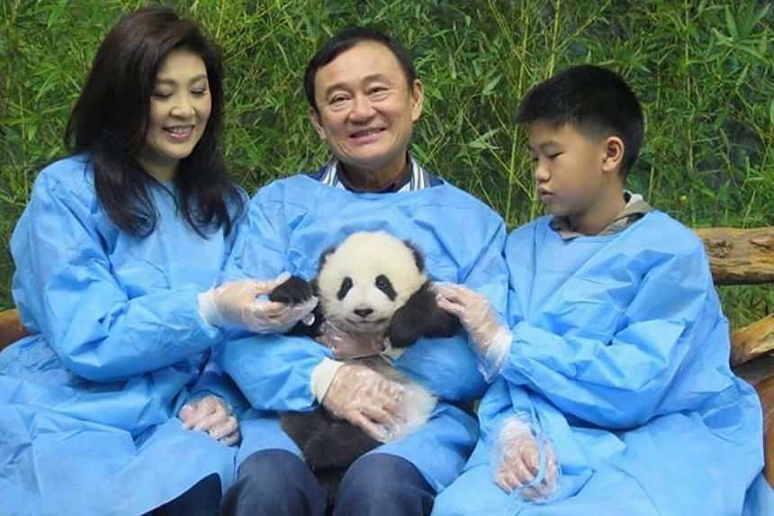 This photo of former Thai premiers Thaksin and Yingluck Shinawatra, along with Yingluck's son Supasek Amornchat, cuddling a panda in China was widely used by the country's media over the weekend. -- PHOTO: FACEBOOK/YINGLUCK SHINAWATRA