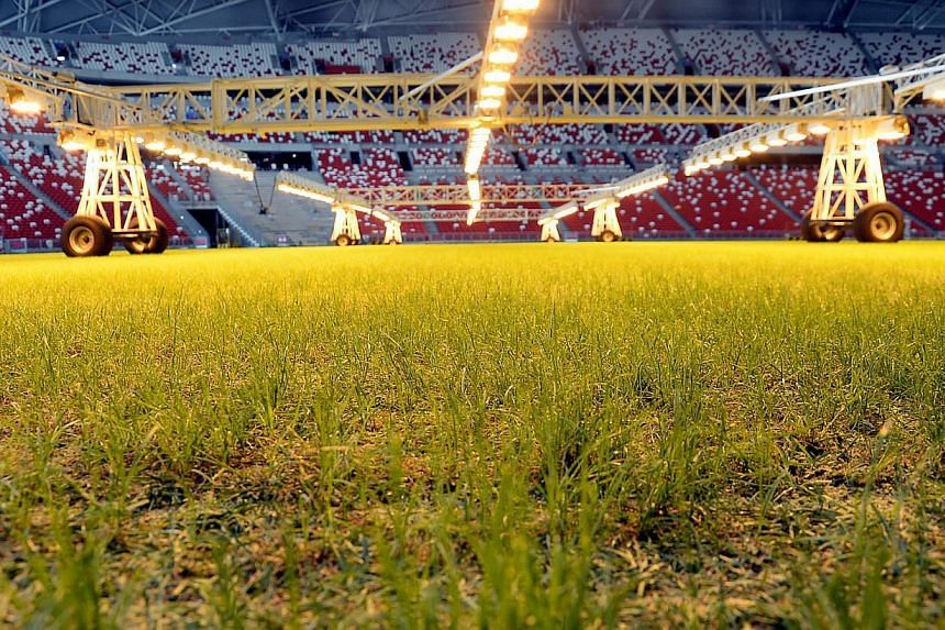 The state of the grass pitch on Nov 4, 2014, at the new National Stadium at the Singapore Sports Hub. -- PHOTO: BERITA HARIAN