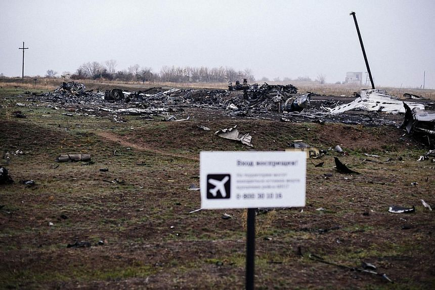 Parts of the Malaysia Airlines Flight MH17 at the crash site in the village of Hrabove (Grabovo), some 80km east of Donetsk. -- PHOTO: AFP