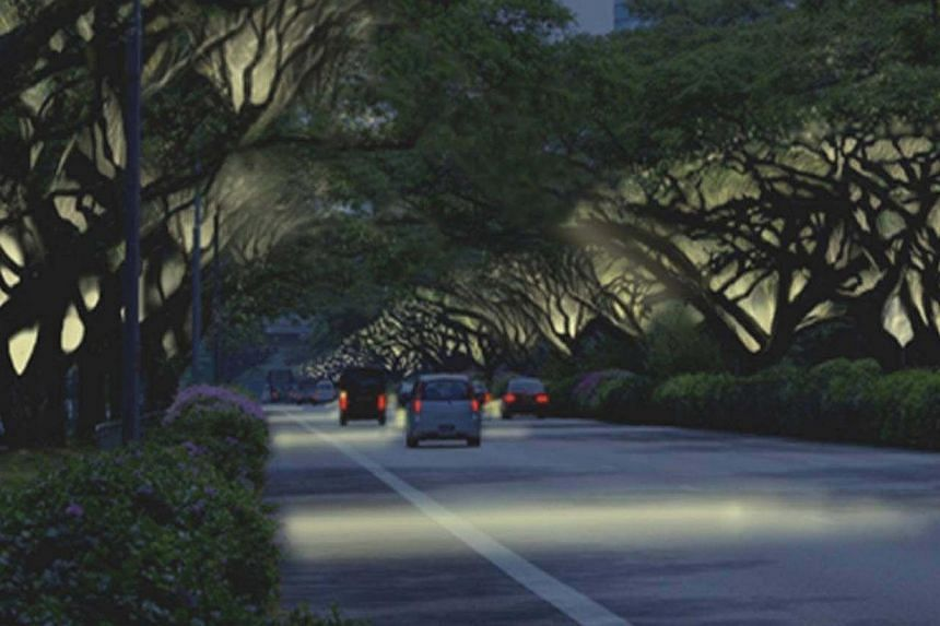 More plants and lighting will be added to highways in Singapore as part of the National Parks Board SG50 celebration. -- PHOTO:NATIONAL PARKS BOARD