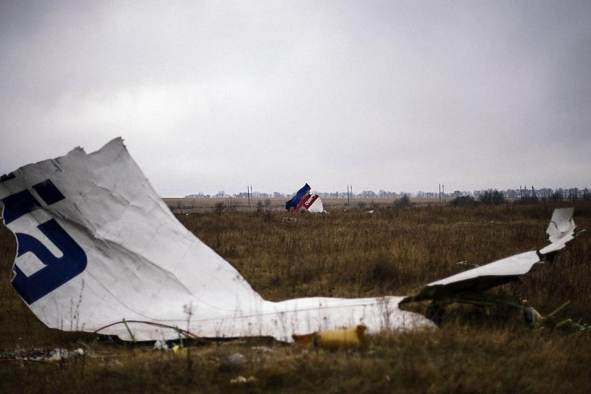 Parts of the Malaysia Airlines Flight MH17 at the crash site near the village of Hrabove (Grabovo), some 80km east of Donetsk. -- PHOTO: AFP
