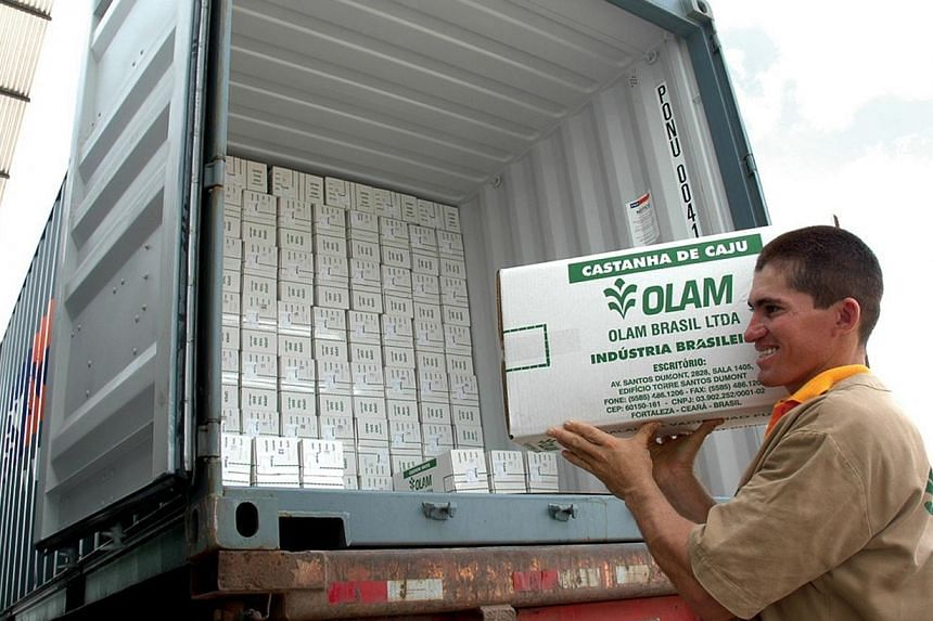 An undated handout photograph shows an Olam International Ltd. employee loading a truck with boxes of cashew nuts for export, in Brazil, provided to the media on Friday, Dec. 5, 2008.Olam International shares surged to a seven-week high on Thur