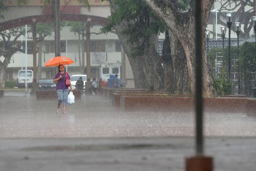 A woman braves the torrential rain at Toa Payoh on Nov 13, 2014. -- ST PHOTO: NG SOR LUAN