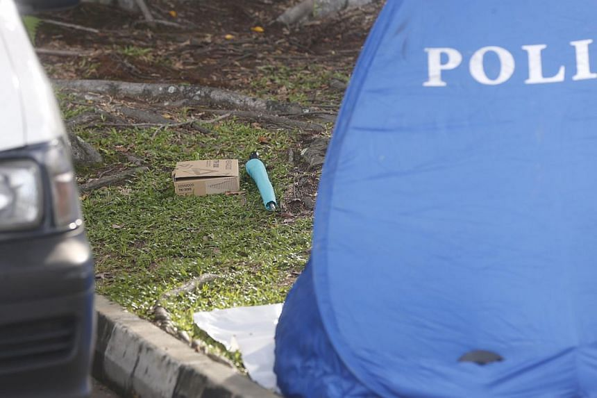 A box and an umbrella seen near a white van with shattered glass at Sembawang Park on Nov 14, 2014. -- ST PHOTO: KEVIN LIM